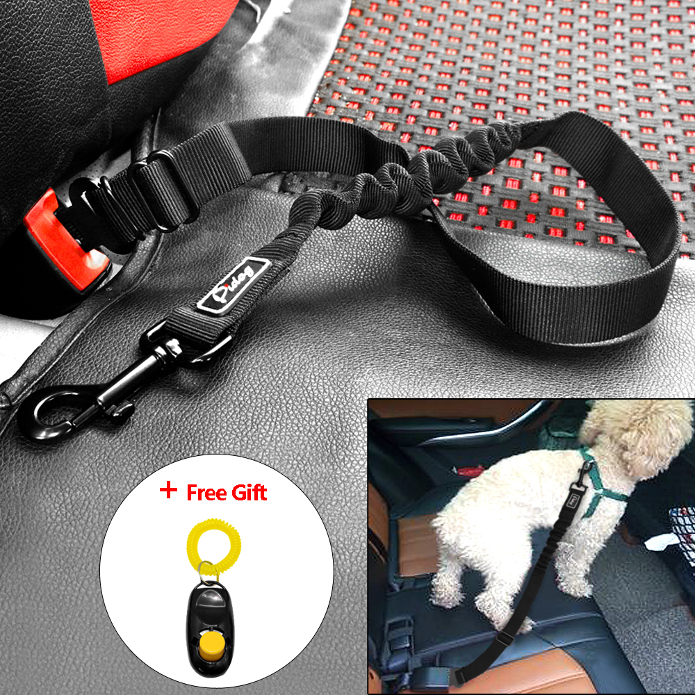 Most Secure Dog Harness In Car Uk